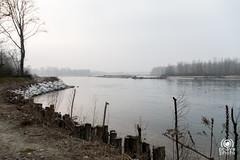 Lanca Ayala (andrea.prave) Tags: lancaayala lanca ticino lombardia lombardy parcodelticino fiume river vigevano pavia valledelticino
