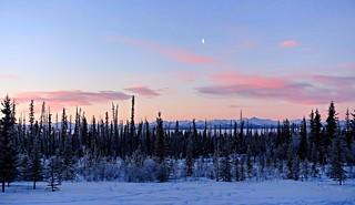 Sunday Morning in Alaska (Explored)