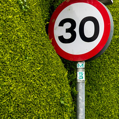 Entering Residential Zone (wmphoto.co.uk) Tags: urban plant green speed bush topiary details safety hedge cumbria residential whitehaven