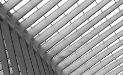 ([Alexandre]) Tags: bw abstract lines architecture belgium railwaystation ligeguillemins