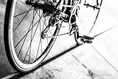 bike-bicycle-roubaix.jpg (r.nial.bradshaw) Tags: blackandwhite bike bicycle 50mm photo nikon image chain creativecommons gears cassette stockphoto drivetrain stockphotography chainlinks derailleur royaltyfree attributionlicense nikond80 lightroom4 rnialbradshaw