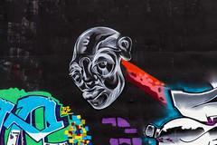 Paint Louis 2013 (Mike Matney Photography) Tags: urban june wall canon graffiti paint stlouis missouri mississippiriver floodwall 2013 paintlouis paintstlouis