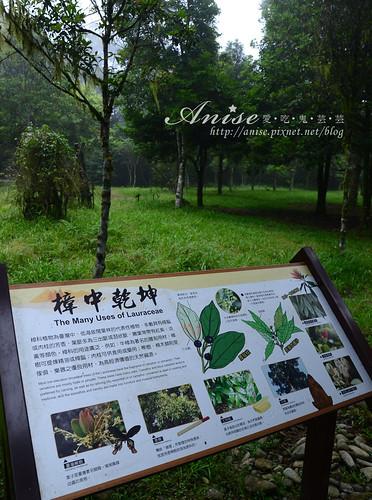 福山植物園_033.jpg