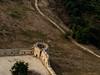 מבצר אנטיפטריס