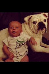 Cannon and his bulldog brother Farley (cgriffi2) Tags: dog baby white cute leather puppy photography infant state brother bulldog couch newborn future wrestler champ onesie