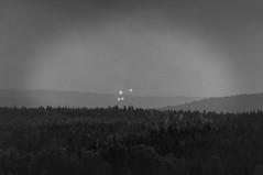 NATURE WILDLIFE WOOD (Micael Carlsson) Tags: wood nature forest fotograf sweden karlstad desolate survival kil vrmland charlottenberg arvika deje torsby kristinehamn sunne hagfors forshaga hllefors munkfors fotografkarlstad miccar wwwmicaelcarlssonse micaelcarlssonfotograf