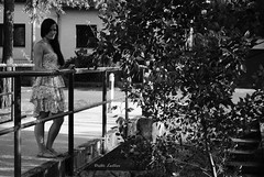 Look down the bridge (dieterlleitner) Tags: street city bridge light summer portrait bw woman sun sunlight white house black tree window nature lamp girl face look leaves stairs creek portraits hair photography austria daylight blackwhite sterreich nikon streetlight iron looking dress streetlamp natur young naturallight down retro foliage bach stadt handrail brook juli gown railing beton photoshooting wienerneustadt d3000 nikond3000 dieterleitner