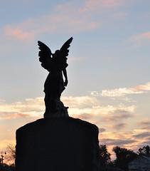 carrollton- angel at dawn