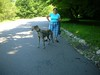 7-22-2012ArnoldArboretum010