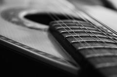 Bandolim (Carla Robalo Martins) Tags: wood portugal beautiful mandolin showroom strings splash 1001nights madeira soe breathtaking seixal musictomyeyes cordas bandolim ruby3 otw finegold greatphotographers flickrstars flickrspecial 14karatgold vivalavida peaceaward flickrhearts agradephoto flickrbronzeaward heartawards theunforgettablepictures flickrsun oursupershots platinumheartaward flickrsheaven betterthangood theperfectphotographer bwartaward goldstaraward picturesworthathousandwords flickrestrellas thebestshot arealgem gününeniyisithebestofday therubyawards photographersgonewild freedomhawk escritacomluz doubledragonawards photographerparadise artisticbw zensationalworld ablackrose sailsevenseas photoismyinspiration bestpeopleschoice notanotherstrictgroup mygearandme fabulousplanetevo flickrbronzetrophygroup flickrbronzetrophy ruby10 ruby15 niceasitgets thelooklevel1red bwvivalavida redlevelno1 ruby20