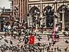 Libertad!!!! (*atrium09) Tags: plaza people india birds square libertad pigeons free personas pajaros palomas hdr indi atrium09