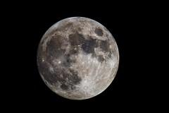Full Moon (joeybocc1) Tags: moon nikon space hobby astro luna nasa explore telescope crater astrophotography astronomy nightsky universe lunar cosmos solarsystem celestron discover darksky milkyway moonsurface astroimaging neximage