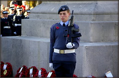 When ... (The Old Brit) Tags: street monument atc candid military rifle sombre gloves weapon poppy poppies uniforms cenotaph remembrance airforce candids monuments beret warmemorial poppywreath southport raf memorials aircadets remembrancesunday merseyside sefton warmemorials airtrainingcorps