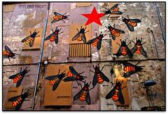 Quatre barres i una estrella (#Ss #9N2014), Olot (Jess Cano Snchez) Tags: espaa canon spain catalonia catalunya catalua pyrenees eos20d independencia garrotxa pirineos pirineus olot espanya tamron18200 elsenyordelsbertins gironaprovincia pelscaminsdelspaisoscatalans ctgx