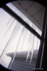 icicles-window-winter.jpg (r.nial.bradshaw) Tags: winter window iso800 lomography nikon creativecommons filters vignette icicles 2014 d40 attributionlicense apsc verticalformat nikond40 1870mmafs dxformat 1xmacrofilter neewer lightroom5 rnialbradshaw lomographybyfiltration 365project4 vaselineonuv neewermacrofilter