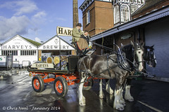 Harveys Brewery Dray #3 10.01.2014 (CNThings) Tags: horses horse beer sussex nikon barrel ale brewery shire cart bitter lewes brewer cask chrisneal realale harveys shires shirehorse dray d7100 cnthings