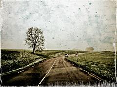 jour de neige, fin (Marie Hacene) Tags: voiture textures route neige paysage arbre
