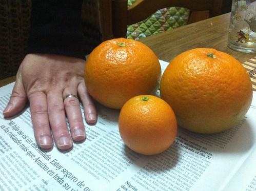 Mandarinas de Gondomar