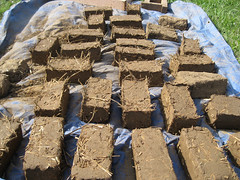 Adobe bricks_4630297557_l