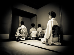 Urasenke, Shaon Chakai 2014, Gakuen - 01 (Stéphane Barbery) Tags: japan kyoto tea 京都 日本 japon thé chanoyu 茶道 gakuen urasenke sadô shaonchakai