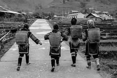 The tradtional lifestyle. (stewie__) Tags: travel blackandwhite blog fuji vietnam sapa hmong travelphotography xt1