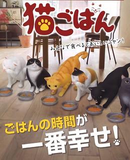 超療癒幸福時刻!貓咪用餐姿態立體化