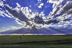 Crepuscular Rays over Alberta Prairies (Amazing Sky Photography) Tags: canada field clouds alberta cloudscape sunbeams stormclouds crepuscularrays prairiesky atmosphericphenomenon