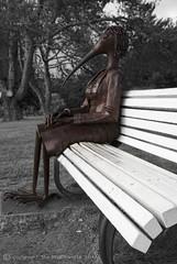SBP_1278 (StuNZ2) Tags: newzealand sculpture day auckland 365 149 nikond200 aucklandbotanicalgardens stuartbraithwaite 18105mmf3556ged