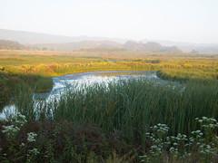 (nicolai_g) Tags: landscape 1528
