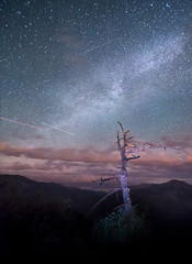 Kings Canyon at Night (Steven Sobel) Tags: california longexposure nature night landscape nationalpark nikon colorful tokina astrophotography d750 kingscanyon
