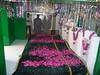 Hazrat Mian Muhammad Yousaf Sarkar (R.A) Darbar Sharif (Danish1341) Tags: saint sharif shrine holy ahmad sufi allah peer muhammad abad yousaf mian hazrat qila sarkar darbar aulia