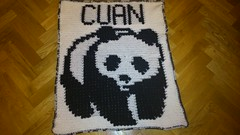 PANDA BLANKET FOR CUAN (dochol) Tags: baby cute wool panda handmade name crochet craft yarn blanket afghan bebe alphabet manta personalised croche babyname crochethooks babybalanket haakenwert