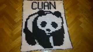 PANDA BLANKET FOR CUAN