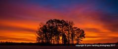 Center Grove at Dawn (T i s d a l e) Tags: tisdale centergroveatdawn dawn sunrise farm field centergrove cemetary winter february 2017 easternnc