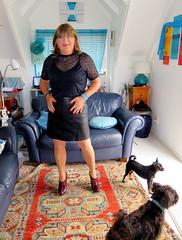 The dogs (Trixy Deans) Tags: crossdresser cute crossdress classy dress dresses skirts skirt tgirl tv transvestite transsexual tranny tgirls trixydeans transvesite crossdressing cd highheels hot heels