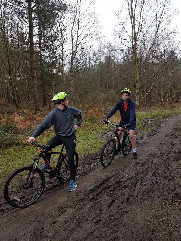 Mountain Biking In Sherwood Forest Corecom