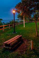 DSC06241 (Esteban Classen) Tags: bench banco soledad solitudine loneliness park streetphotography walkaround entrerios parana rivercoast costa