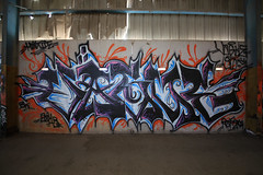 (o texano) Tags: graffiti texas houston vague stk nfm