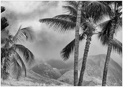 20121210 - Lahaina, Maui - Weather Coming (ra1000) Tags: hawaii maui lahaina