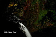 039 (Photos by Wesley Edward Clark) Tags: oregon silverton waterfalls scottsmills abiquacreek abiquafalls