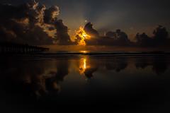 Jax. Beach (Royal Hurlbert) Tags: city bridge trees sunset beach water sunrise outside outdoors pier dock waves driftwood