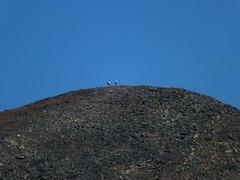 Devil's Thumb (Lake Louise) Scramble - Hikers atop Mt St Pirans across the valley (benlarhome) Tags: mountain canada trekking trek rockies nationalpark hiking hike alberta rockymountain banff lakelouise scramble scrambling