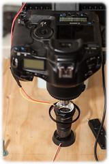 Ready to Shoot (Craig Jewell Photography) Tags: light macro photography iso100 stage australia led rig 100 microscopic f50 ringlight arduino 2013 canoneos5dmarkii ¹⁄₂₀₀sec ‒⅓ev ef100mmf28lmacroisusm reichertplan10025 filename20131006221844mg7907cr2