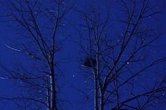 2013_1020Night-Light-Test0005 (maineman152 (Lou)) Tags: longexposure nightphotography fall october maine nightlight nightsky nightscene nightphoto longexposurephotography