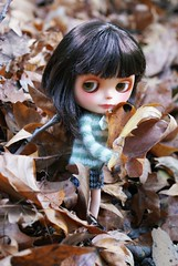 An autumn pixie