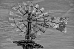 DSC_1895 (RHMImages) Tags: park blackandwhite bw windmill monochrome landscape nikon rust rusted rusting blackdiamond ebrpd d600 ebparksok