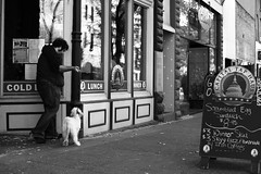 colddinner (local paparazzi (isthmusportrait.com)) Tags: street autumn windows light blackandwhite bw hairy food dog white black cold fall texture window beer glass animal contrast dinner writing reflections dark menu puppy lunch outdoors prime restaurant words yummy pod soft bright pavement walk iso400 candid board border smooth shapes streetphotography fluffy haus sidewalk frame chilly doggy af madisonwi written tap pooch chalkboard puffy edible stroll statestreet rectangles brisk autofocus walkthedog menuboard 895 isthmus 2013 50mmf14usm danecountywisconsin photoshopelements7 canon5dmarkii localpaparazzi redskyrocketman lopaps capitaltaphaus