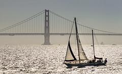 Sailing the bay (waldo.posth) Tags: bridge golden bay gate san francisco minolta sony apo af f28 hs 200mm slta99v