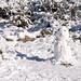 Neve no Parque Natural do Alvão-22