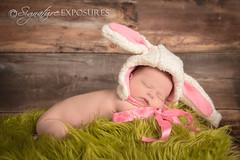 140201123315-4569 (shannbil (Signature Exposures)) Tags: baby bunny girl easter newborn lamb signatureexposures shannonbileski shannbil